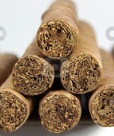 Cigar Pile stock photo, A row of authentic Cuban cigars.  by Chris Hill