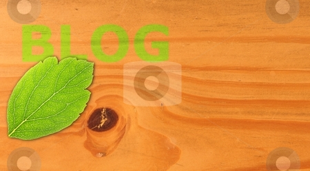 Blog stock photo, blog concept with word on nature still life by Gunnar Pippel