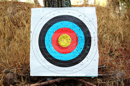 Colorful shooting target stock photo, Colorful shooting target on a tree. Abstract sports background. by sirylok
