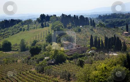 Tuscan Farm Vineyard San Gimignano Tuscany Italy stock photo, Tuscan Farm Vineyard San Gimignano Tuscany Italy by William Perry