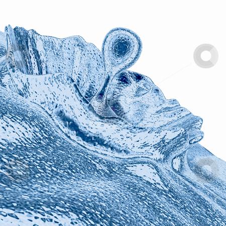 Liquid Splash stock photo, Computer generated image - Liquid Splash. by Konstantinos Kokkinis