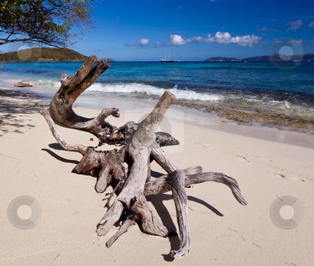 Hawksnest Bay on St John stock photo, Hawksnest Bay on the Caribbean island of St John in the US Virgin Islands by Steven Heap