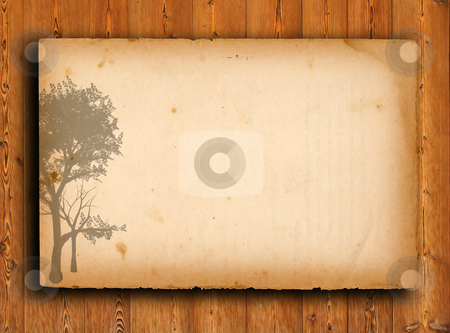 Tree with old grunge antique paper texture  stock photo, tree with old grunge antique paper texture by rufous