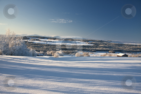 Beautiful winter landscape stock photo, Beautiful winter landscape of white snow and blue sky  by Ingvar Bjork