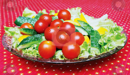 Dish with vegetables stock photo, Dish with the expansion of its tomatoes, cucumbers, peppers and lettuce listmi by Andrey Andronov