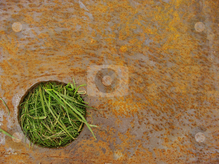 Steel rusty plate with circular cut where grass is showing throu stock photo, steel rusty plate with circular cut where grass is showing through by johnjohnson