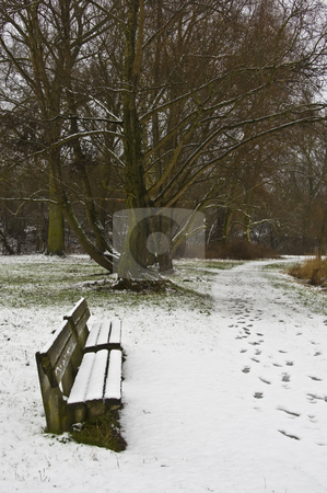 Snowy bench stock photo, benches in a park covered with snow by Juliane Jacobs