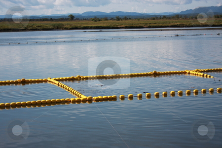 Large fihing net in water stock photo, Large fihing net in water. Island Sakhalin, Russian Federation by ArcticObserver