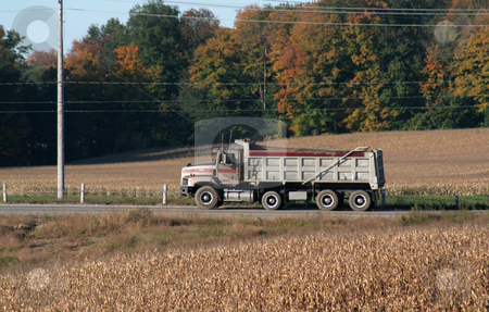 Dump Truck Moving stock photo, truck,moving,move,dump truck,road,autumn,fall,harvest,corn,field,sideview,pole,wire,wheel,in motion,post,posts,trees,forest,travel,horizontal  by Chris Hill