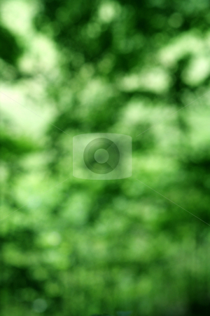 Blotchy Green Background stock photo, A bloctchy green background. by Chris Hill