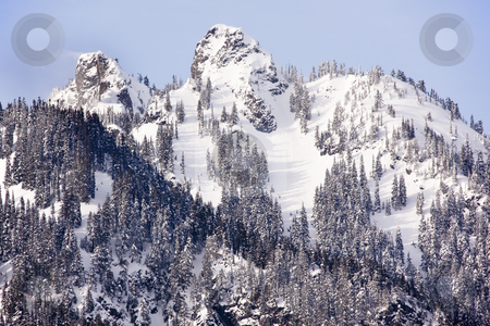 Snowy Mount Alaska Peaks Snoqualme Pass Washington stock photo, Blowing Snow Covered Mount Alaska Peaks Winter Snoqualme Pass Wenatchee National Forest Wilderness Washington by William Perry