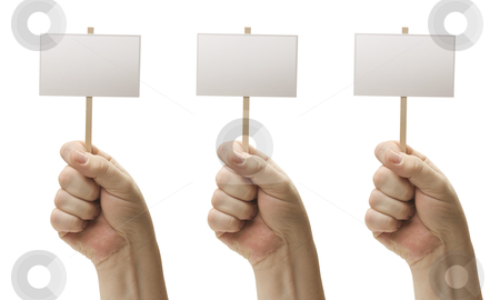 Three Blank Signs In Fist stock photo, Three Blank Signs In Male Fists Isolated on a White Background. by Andy Dean