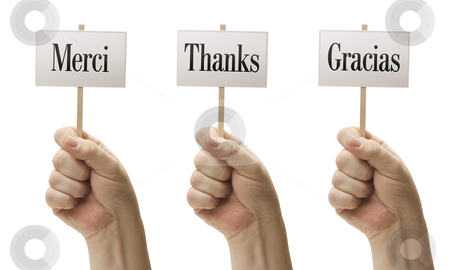 Three Signs In Fists Saying Merci, Thanks and Gracias stock photo, Three Signs In Male Fists Saying Merci, Thanks and Gracias Isolated on a White Background. by Andy Dean
