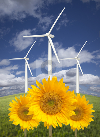 Wind Turbines Against Dramatic Sky with Bright Sunflowers stock photo, Wind Turbines Against Dramatic Sky, Clouds and Bright Sunflowers in the Foreground.  by Andy Dean