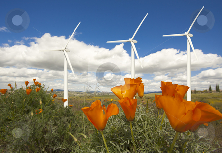 Wind Turbines Against Dramatic Sky and California Poppies   stock photo, Wind Turbines Against Dramatic Sky, Clouds and California Poppies in the Foreground.  by Andy Dean