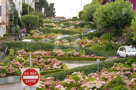 Lombard Street stock photo, View of Lombard Street, the crookedest street in the world, San Francisco, California by Albo
