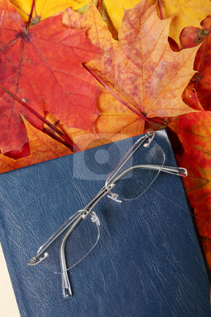Old book  stock photo, Old book and glasses laying on autumn maple leafs by Piotr_Marcinski