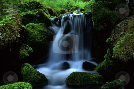Stream in mountain stock photo, Beautiful stream in mountain with green grass and trees by Ingvar Bjork