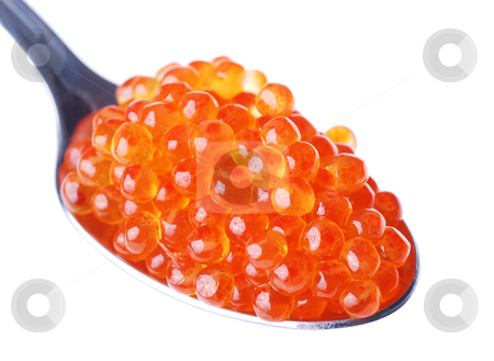 Fresh red caviar  stock photo, Fresh red caviar on a spoon  by sutike