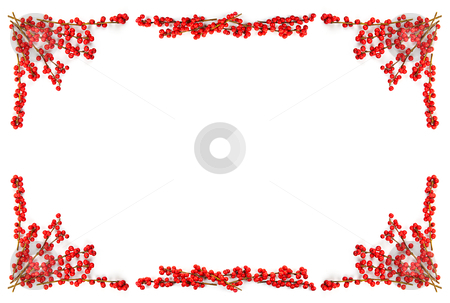 Christmas border with red berries stock photo, Red winterberry Christmas frame with holly berries on branches by Elena Elisseeva