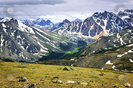 Rocky Mountains in Jasper National Park, Canada stock photo, Scenic view from Whistlers Mountain in Jasper National park, Canada by Elena Elisseeva