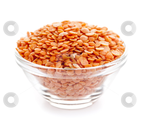 Bowl of uncooked red lentils stock photo, Bowl of red lentils isolated on white background by Elena Elisseeva
