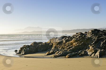 Coast of Pacific ocean, Vancouver Island, Canada stock photo, Rocky shore of Long Beach in Pacific Rim National park, Canada by Elena Elisseeva