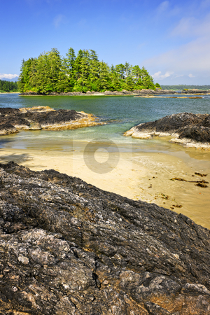 Coast of Pacific ocean, Vancouver Island, Canada stock photo, View from Long Beach in Pacific Rim National park, Canada by Elena Elisseeva
