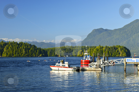 Boats at dock in Tofino, Vancouver Island, Canada stock photo, Boats at dock in Tofino on Pacific coast of British Columbia, Canada by Elena Elisseeva