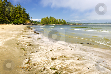 Coast of Pacific ocean, Vancouver Island, Canada stock photo, Long Beach in Pacific Rim National park, Vancouver Island, Canada by Elena Elisseeva