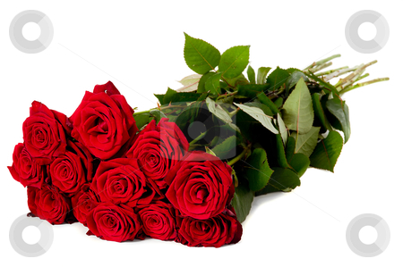 Rose bouquet stock photo, Bouquet of red roses taken on a white background by Lars Christensen