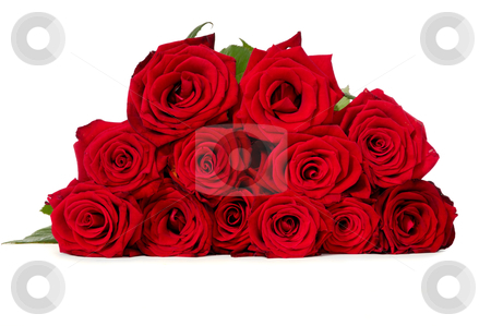Red roses stock photo, Bouquet of red roses taken on a white background by Lars Christensen