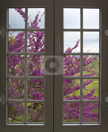View through the window to the countryside stock photo, View through the window to the countryside by Neonn