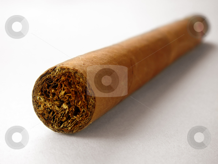 Close-up of cuban cigar stock photo, Close-up of cuban cigar                                by stockhouse