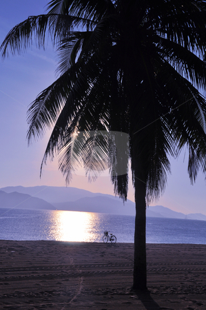 Landscape on beach stock photo, Landscape of the silhouette of palm tree and bike on the beach at sunrise by John Young