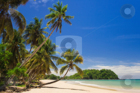 Tropical beach landscape stock photo, Tropical beach landscape from Nosy Be island, Madagascar by Pierre-Yves Babelon