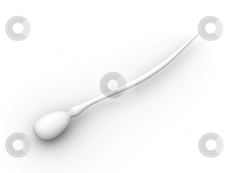 Sperm Cell stock photo, Sperm Cell. 3D rendered Illustration. Isolated on white.  by Michael Osterrieder