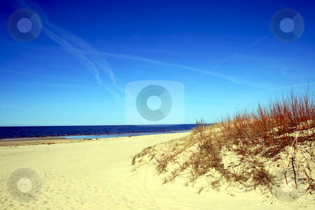 Baltic sea wild beach stock photo, Baltic sea wild beach early spring by Tatjana Keisa