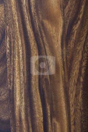 Black Walnut Wood stock photo, American natural walnut wood floor- refinished  by tab62