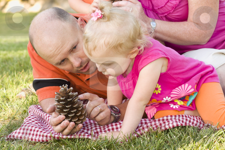 Father and Daughter Talk about Pine Cone in Park stock photo, Handsome Father and Adorable Young Daughter Talk about Pine Cone in the Park. by Andy Dean