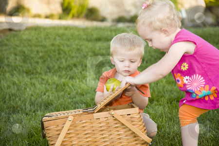 Brother and Sister Toddlers Playing with Apple and Picnic Basket stock photo, Cute Brother and Sister Toddlers Playing with Apple and Picnic Basket in the Park. by Andy Dean