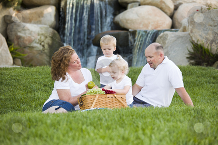 Happy Young Family Enjoy Picnic in Park stock photo, Happy Adorable Young Family with Twins Enjoy a Picnic in the Park. by Andy Dean