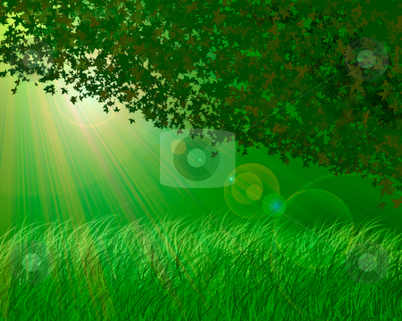 Forest background stock photo, Abstract forest background by olinchuk