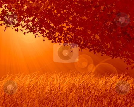 Abstract forest orange background stock photo, Abstract forest background, autumn theme by olinchuk