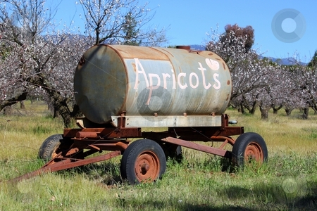 Apricots stock photo, Apricot advertisement on an old water tank hanger. by Henrik Lehnerer