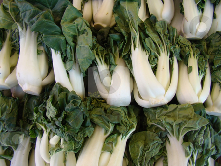 Fresh Bok Choy stock photo,              Fresh Bok Choy                   by CHERYL LAFOND