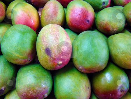Mangos stock photo,                  Mangos               by CHERYL LAFOND