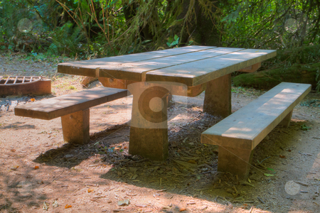 HDR picnic table stock photo, HDR picnic table with trees in background by bobkeenan