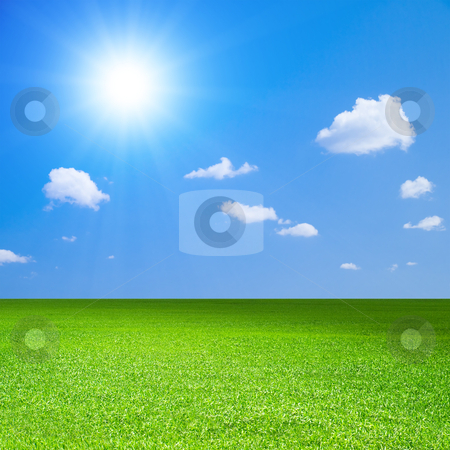 Field. stock photo, Green field, blue sky with white cloud and bright sun. by Oleksiy Fedorov