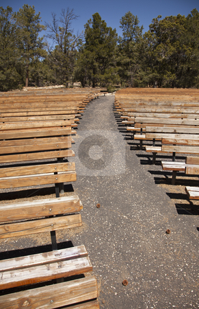 Outdoor Wooden Amphitheater Seating Abstract stock photo, Outdoor Wooden Amphitheater Seating and Pine Cones, Pine Needles and Trees Abstract. by Andy Dean
